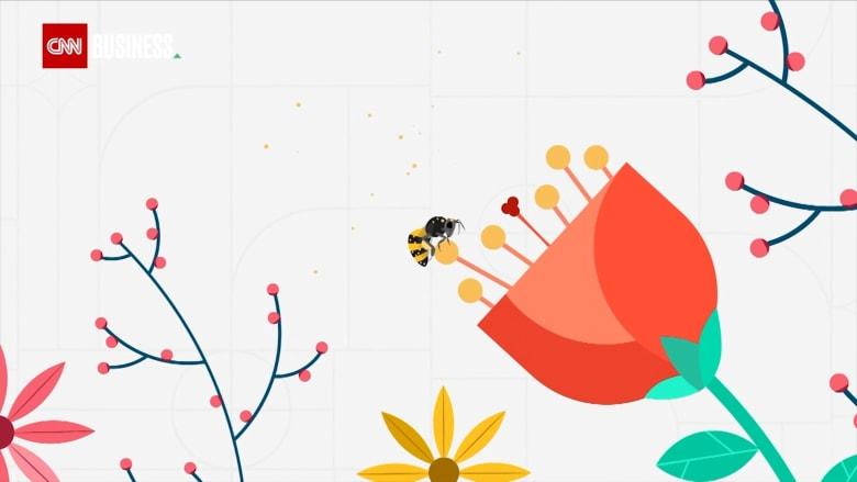 قد تنقذ كوكبنا: تقنية ذكية تساهم في الحفاظ على النحل.. كيف ذلك؟