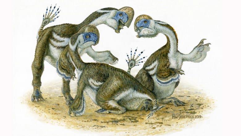 اكتشاف ديناصور شبيه بالببغاء طوله مترين بمنغوليا.., هكذا عاش قبل 69 مليون عام