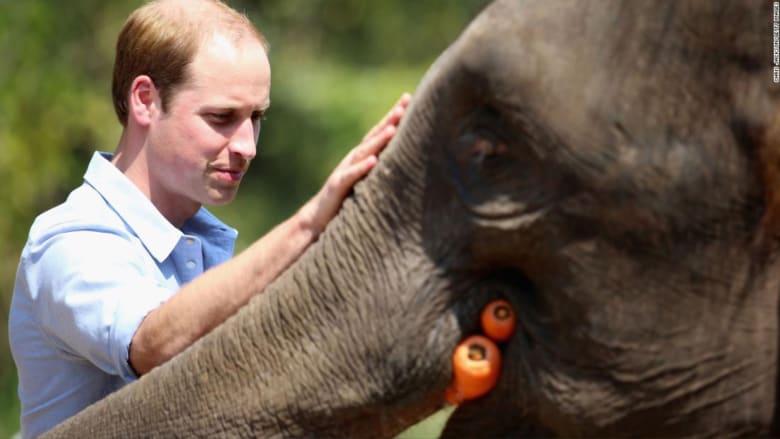 الأمير ويليام لـCNN عن إطلاق أكبر جائزة للبيئة: بإمكاننا إيجاد حلول