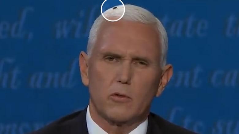"""""""ذبابة على رأس بنس"""".. نائب الرئيس يكشف كيف عرف عن الأمر ويعلق"""