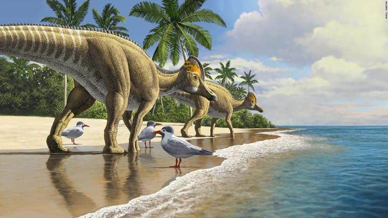 اكتشاف أحفوري جديد يشير إلى أن الديناصورات سافرت عبر المحيطات