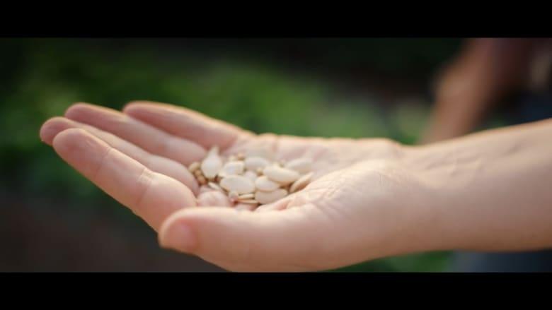 تقنية جديدة تحسن جودة المحاصيل الغذائية.. هذا مستقبل قطاع الزراعة