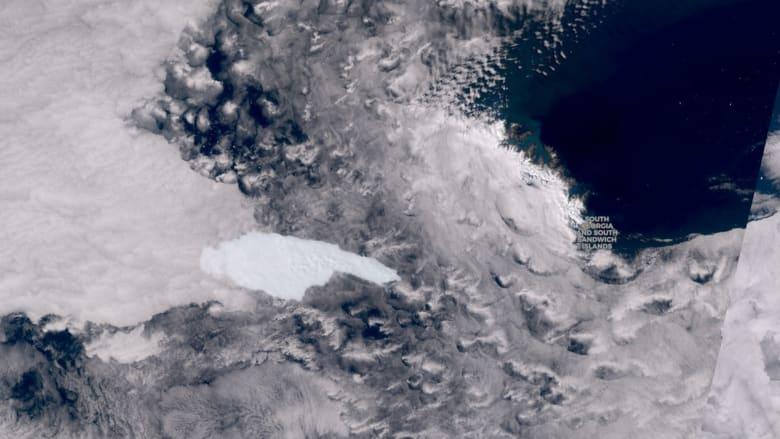 أحد أكبر الجبال الجليدية في العالم يتحرك نحو جزيرة جورجيا ويهدد الحياة البرية