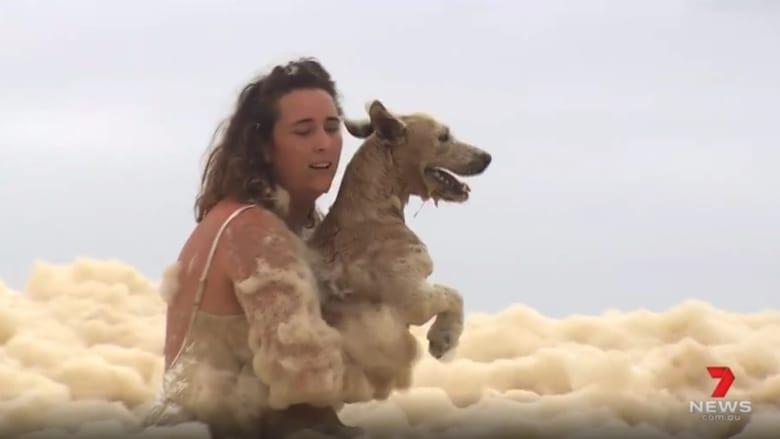 خلال بث مباشر.. شاهد ما حدث لكلبة ابتلعها زبد البحر في أستراليا