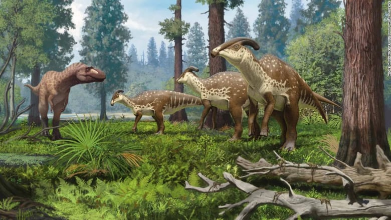 أحفورة جمجمة تكشف كيفية حصول هذا الديناصور على غطاء رأسه الفاخر