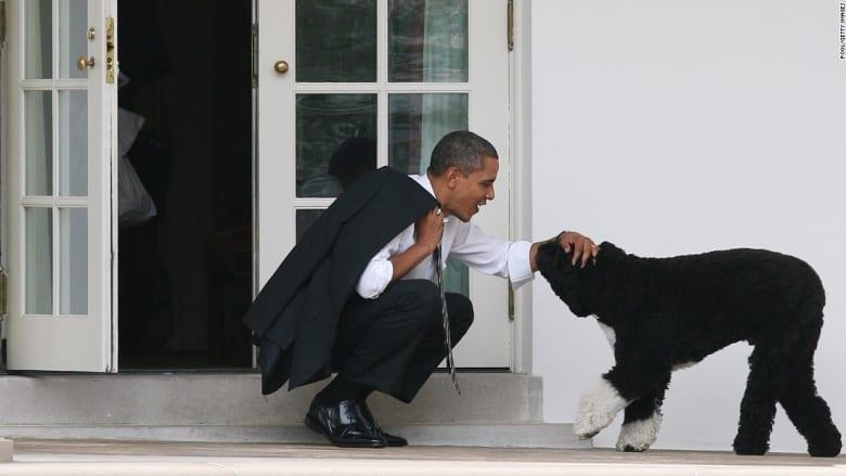 دجاجة بساق واحدة وتمساح.. إليكم أبرز الحيوانات الرئاسية التي عاشت في البيت الأبيض