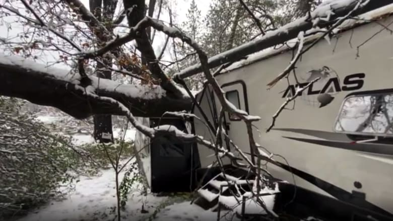 شاهد ما حدث لعربة سكن بداخلها فتاة لحظة سقوط شجرة عملاقة عليها فجأة