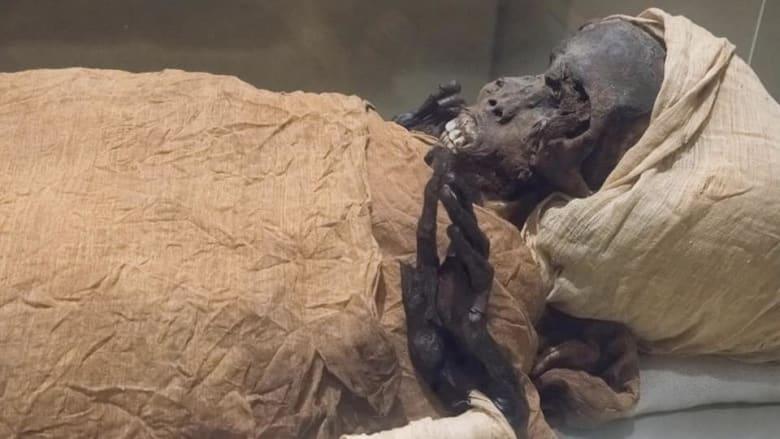 """مات دفاعاً عن مصر..الأشعة المقطعية تكشف لغز وفاة الفرعون """"الشجاع"""""""