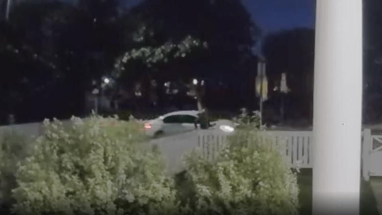 كاميرا مراقبة ترصد لحظة هجوم دموي لسرقة كلاب ليدي غاغا