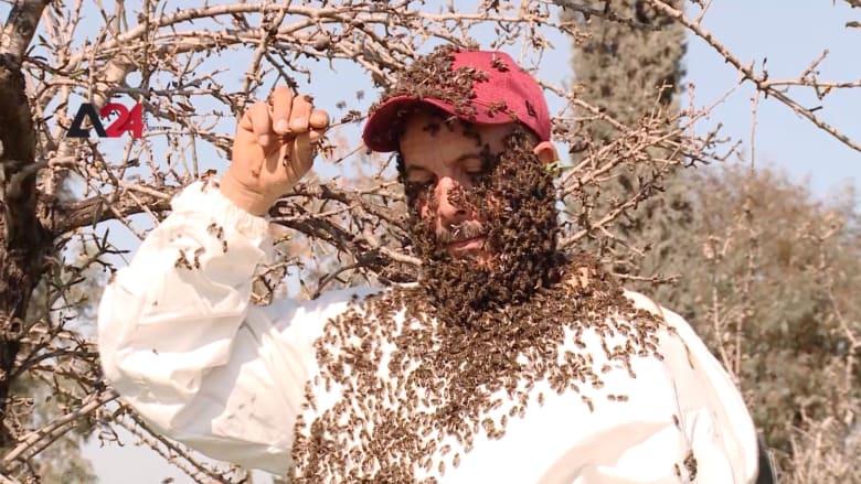 شاهد.. لحية من النحل على وجه تونسي
