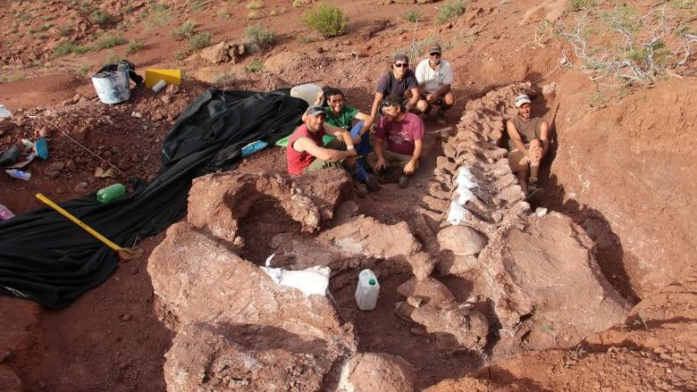 اكتشاف حفريات ديناصور عاش قبل 140 مليون عام في الأرجنتين