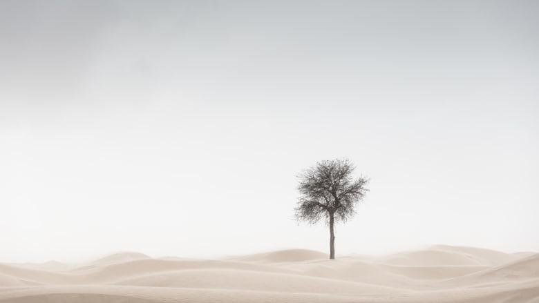 """ظروف """"لا ترحم"""".. مصور يروي تجربته وسط عاصفة ترابية بصحراء الإمارات سعيا لهذه الصور الساحرة"""