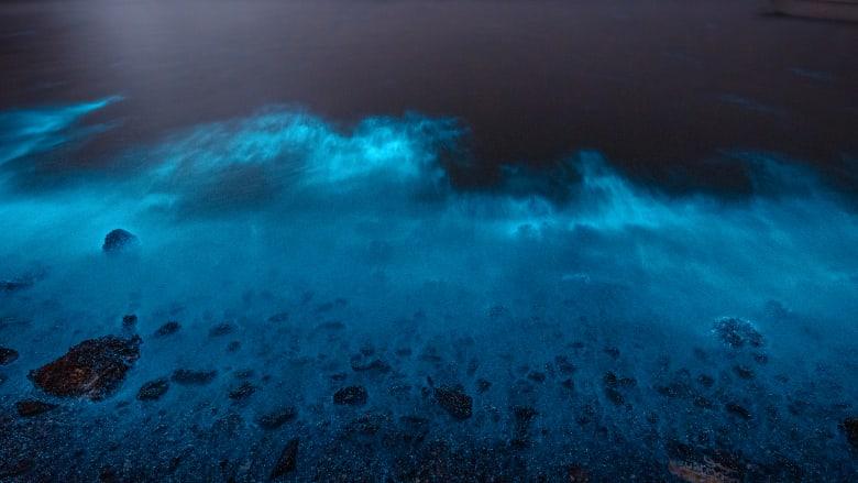 يسميه المحليون بسحر البحر.. مصور يوثق ظاهرة توهج البحر بسلطنة عُمان