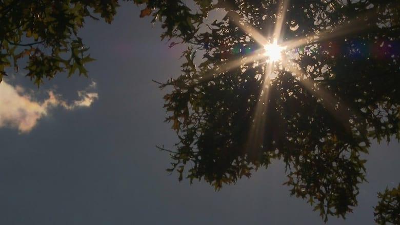 6 خرافات شائعة عن التعرض لأشعة الشمس