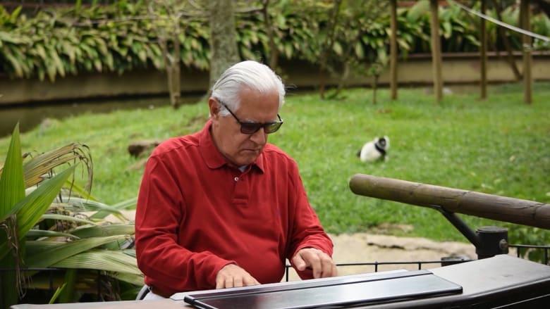 تهدئ أكثرها وحشية.. فنان يعزف موسيقى كلاسيكية في حديقة حيوانات