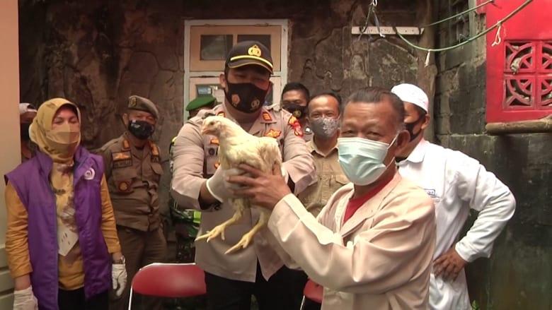 إندونيسيا تشجع الناس لتقلي لقاح فيروس كورونا بطريقة فريدة.. دجاجة لكل شخص يتلقى الجرعة الأولى