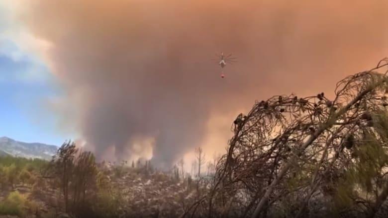 كاميرا CNN ترصد حرائق الغابات الهائلة التي تجتاح مناطق في تركيا