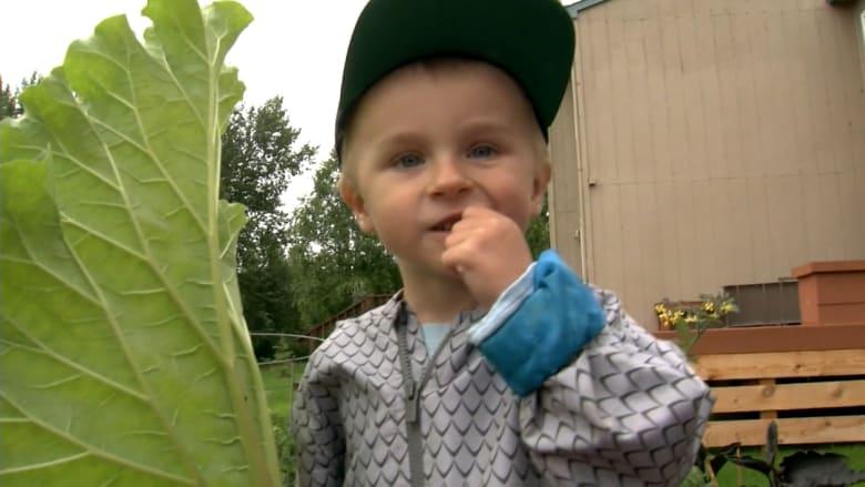 """انتشرت مقاطعه بشكل كبير على """"تيك توك"""".. طفل يكسب حب المتابعين لشغفه بالخضروات"""