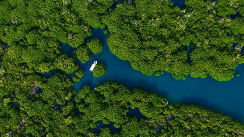 جزر فرسان.. إدراج أول موقع بالسعودية ضمن محميات المحيط الحيوي
