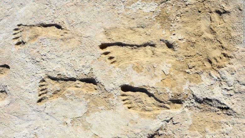 اكتشاف آثار أقدام بشرية عمرها 23 ألف عام في أمريكا.. ما الذي تبينه؟