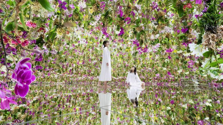 """شاهد.. حديقة زهور """"عائمة"""" مليئة بـ 13000 زهرة أوركيد حية في طوكيو"""
