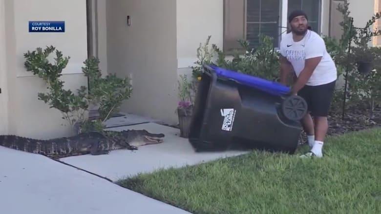 شاهد.. رجل من فلوريدا يحارب تمساحاً بسلة المهملات