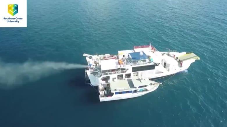 لماذا تقوم هذه سفينة برش بلورات الملح فوق الشعاب المرجانية بأستراليا؟