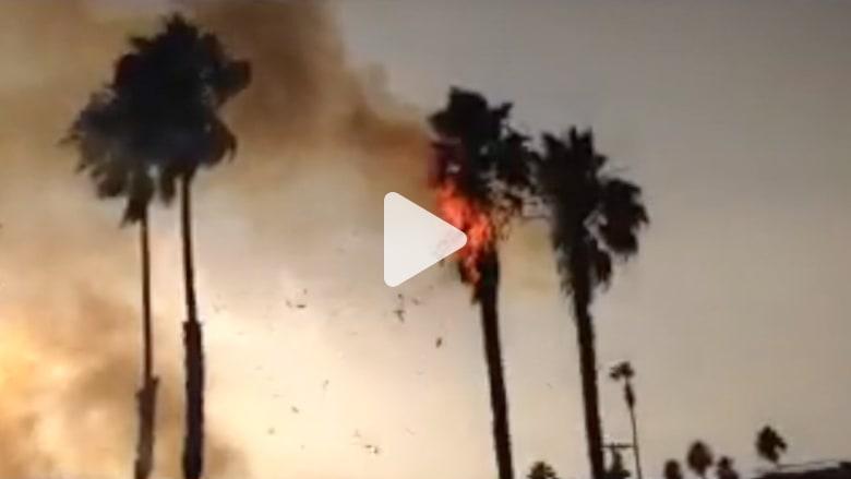صاعقة تحرق شجرة نخيل في سان دييغو