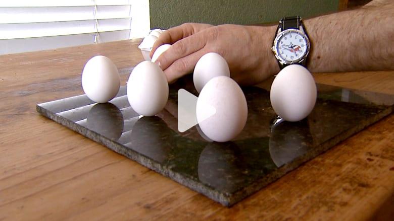 مسابقة السهل الممتنع...كيف تثبّت البيض دون أن يقع وينكسر؟