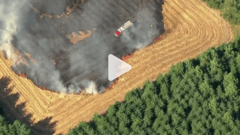 بالفيديو.. حرائق ولاية أوريغون وفرق الإنقاذ تخلي المنازل والطرقات