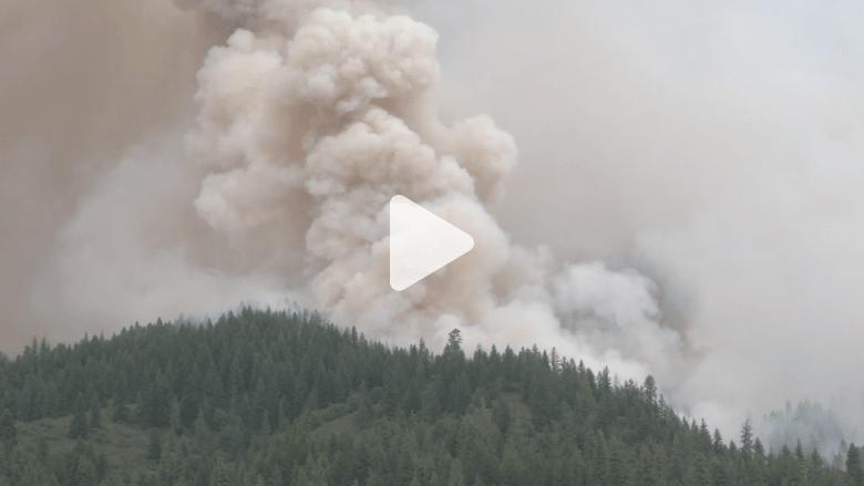 بالفيديو.. مشاهد مرعبة لحرائق الغابات في كاليفورنيا