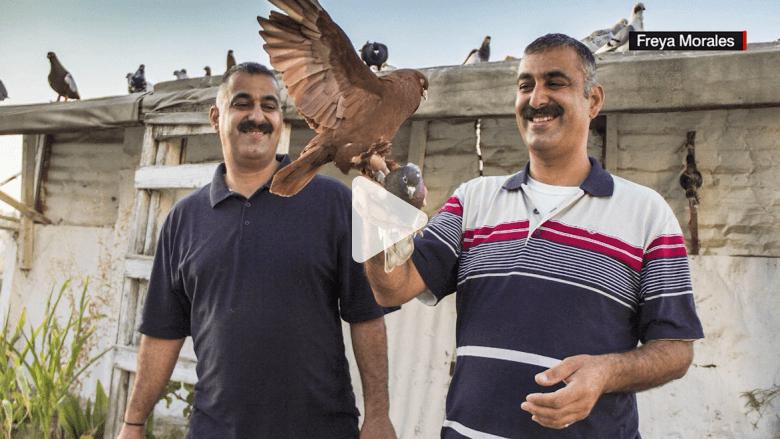 """""""كشاش حمام"""" .. قصة توأم أردنيين يربيان الحمام بمنزلهما منذ 25 عاما"""