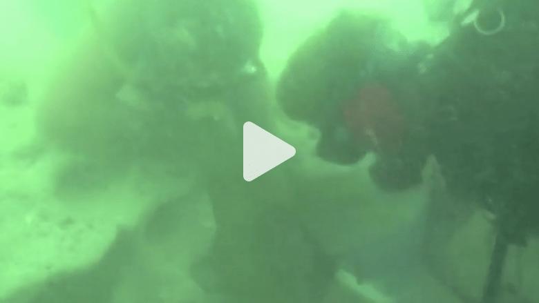 بالفيديو من أعماق المياه.. لحظة العثور على مئات القطع الذهبية غرقت مع سفينة قبل 300 عام