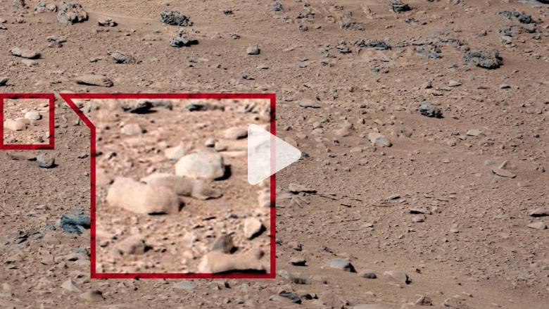 بالفيديو.. امرأة وفئران وبطة على سطح المريخ.. ماحقيقة هذه الصور؟
