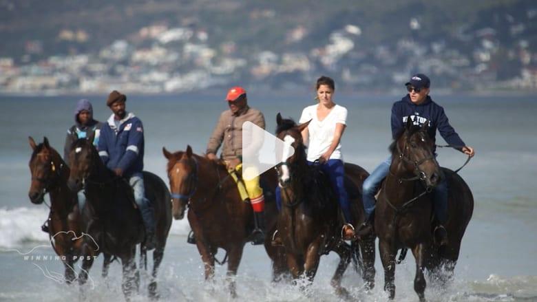 بالفيديو: رحلات على الشاطئ لإعداد أفضل خيول السباق في جنوب أفريقيا