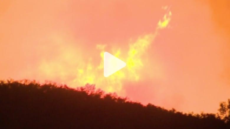 بالفيديو: حرائق في غابات كاليفورنيا والدفاع المدني يجلي 250 عائلة