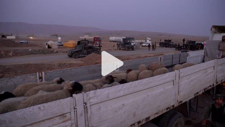 نازحون من الموصل: يكفي النوم دون خوف من الموت