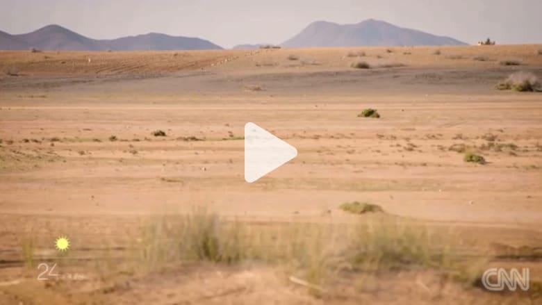 في مرّاكش.. بين الصحراء والواحات الخضراء يعشعش الفن