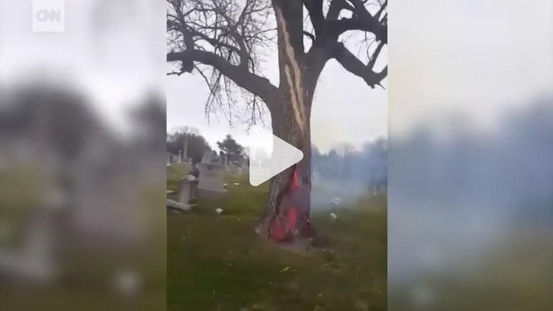 حدث غريب.. شاهد ماذا حدث لشجرة داخل مقبرة ضربتها صاعقة!