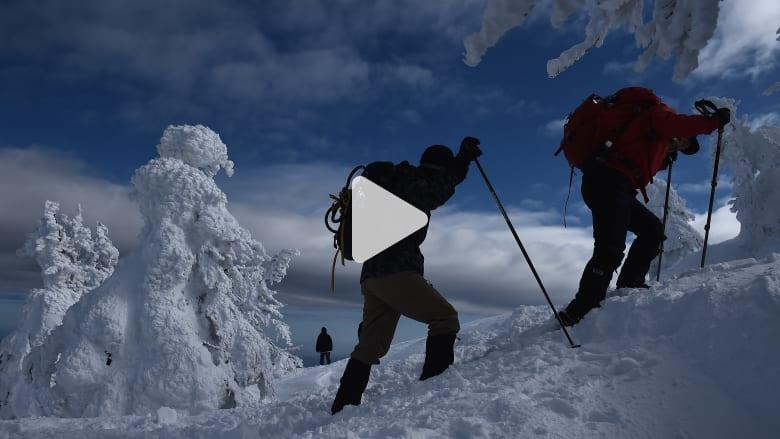 ما الذي تحتاجه للبقاء على قيد الحياة في البرد في البرية؟
