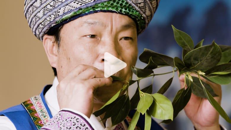 كيف يعزف هذا الرجل الموسيقى بأوراق الشجر؟