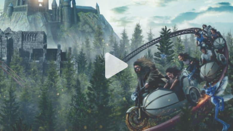 """في هذه """"الغابة المحرمة"""".. عالم هاري بوتر بين يديك"""