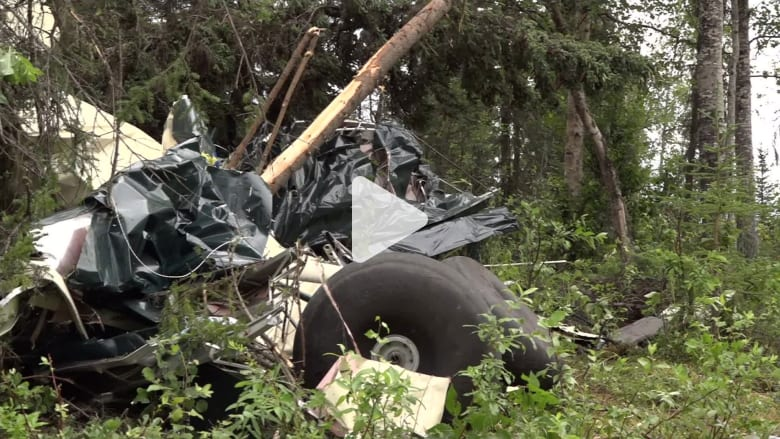 تصادم طائرتين صغيرتين في الجو يتسبب بمقتل 7 أشخاص في ألاسكا