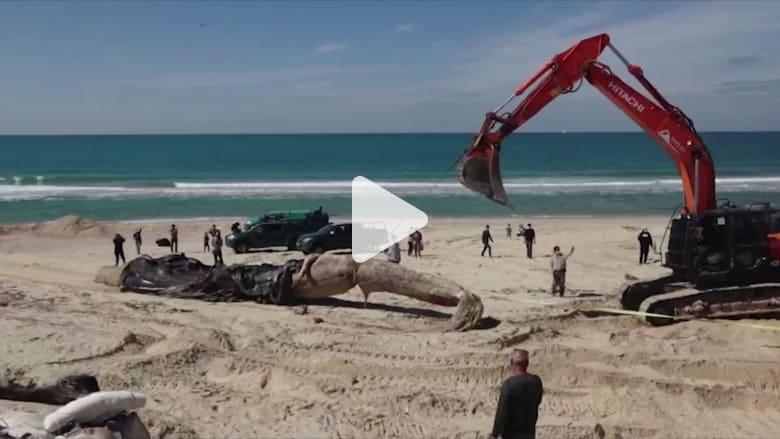 إغلاق شواطئ إسرائيل بعد تسرب نفطي كارثي.. ولبنان يتهم سفينة إسرائيلية