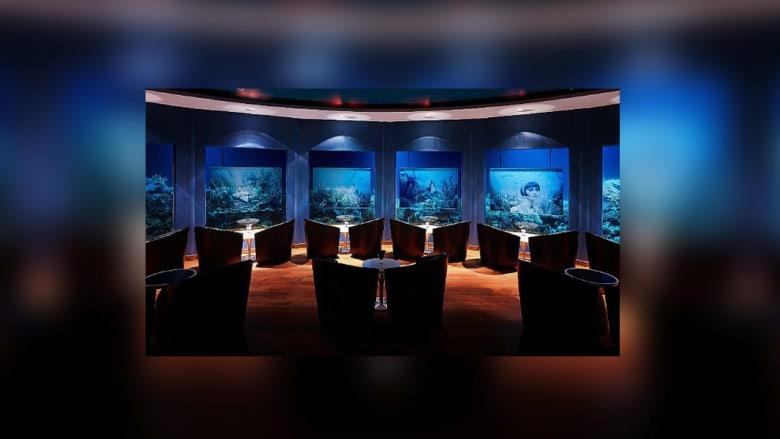 عجائب تحت الماء: سريالية الفن الغارقة في جزر المالديف