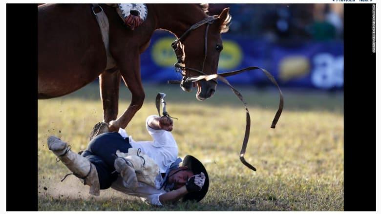 سقوط فارس خلال الاحتفالات السنوية في أوروغواي.