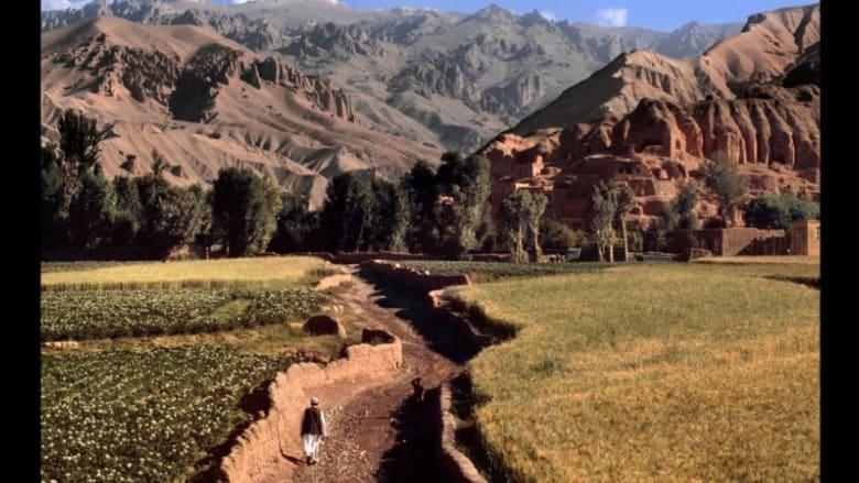 مزارع يمشي في حقل، 2006.