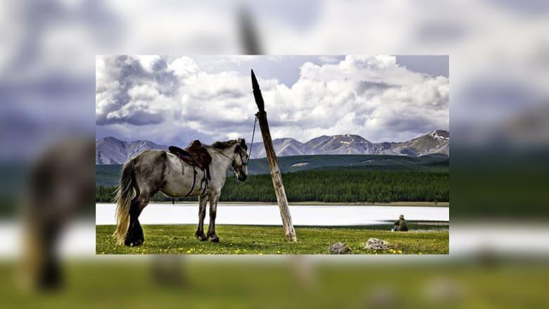 أجمل مواقع رحلات الخيول في العالم