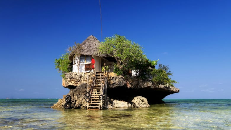 أسماك قرش تتربص ومطعم داخل جوف شجرة.. أغرب مطاعم أفريقيا
