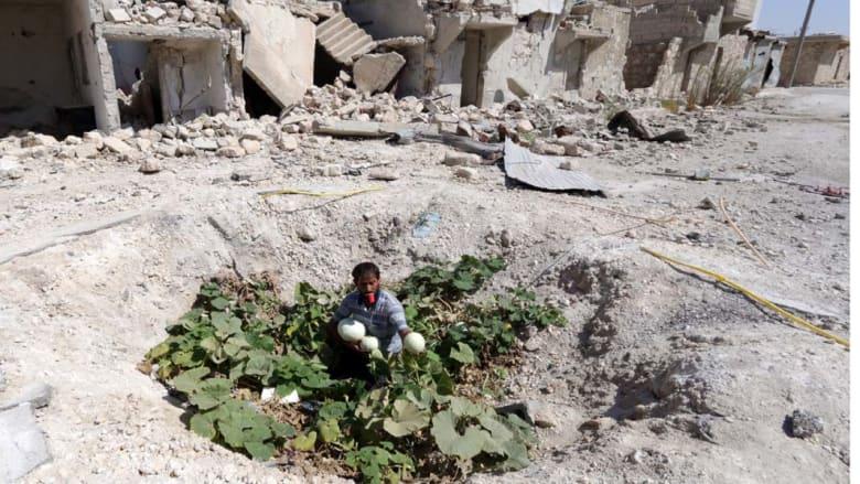 حلب، سوريا -- سوري يجمع الخضار زرعت في مكان سقوط برميل متفجر قرب مدينة حلب شمال سوريا 3 سبتمبر / أيلول 2014